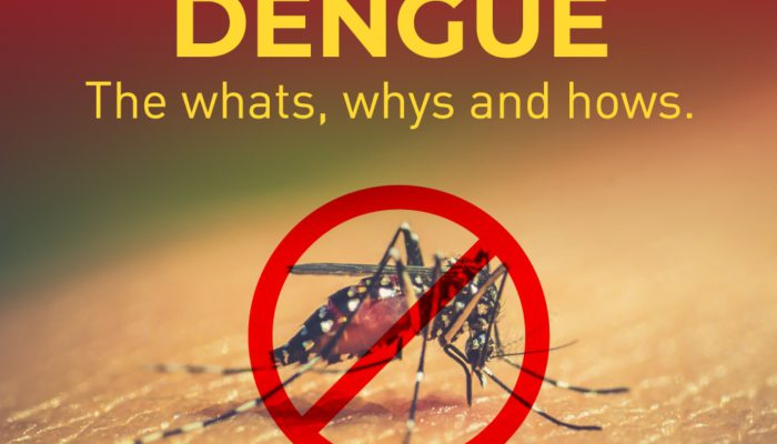Dengue – the whats, whys and hows.